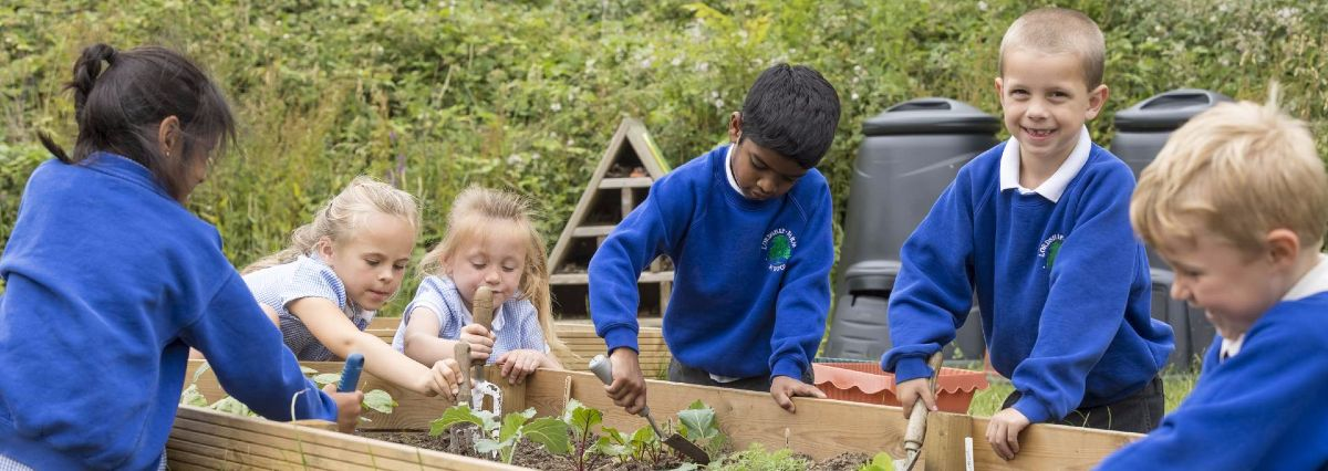 Life at Lordship Farm Primary School